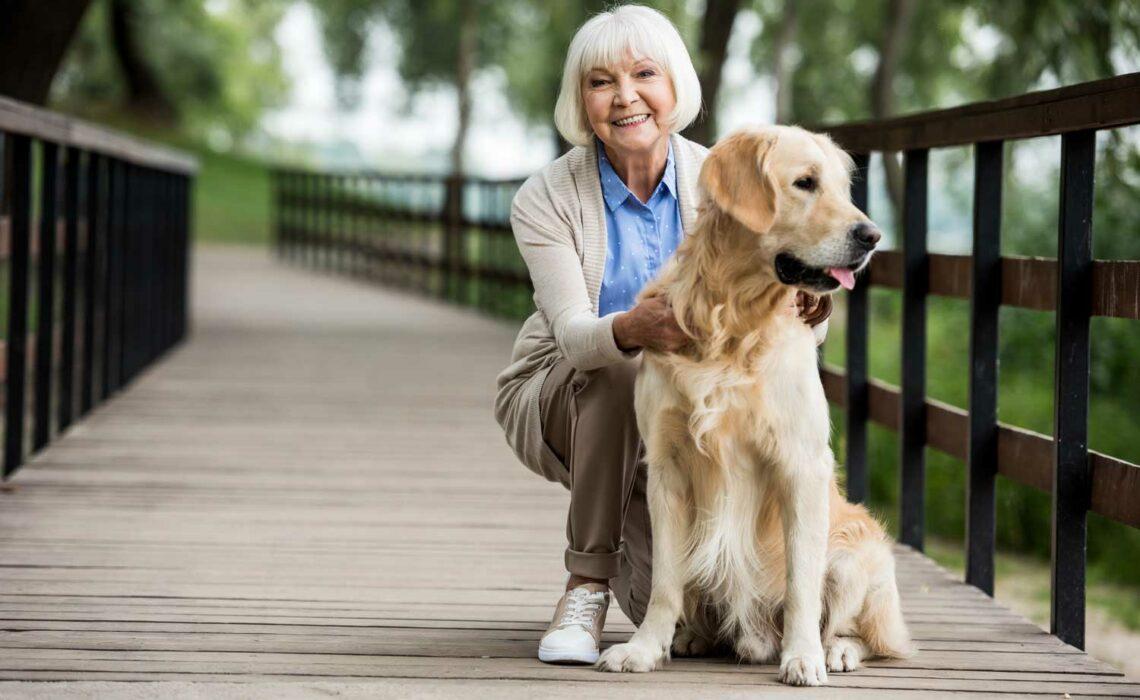 Benefícios de um pet para o idoso