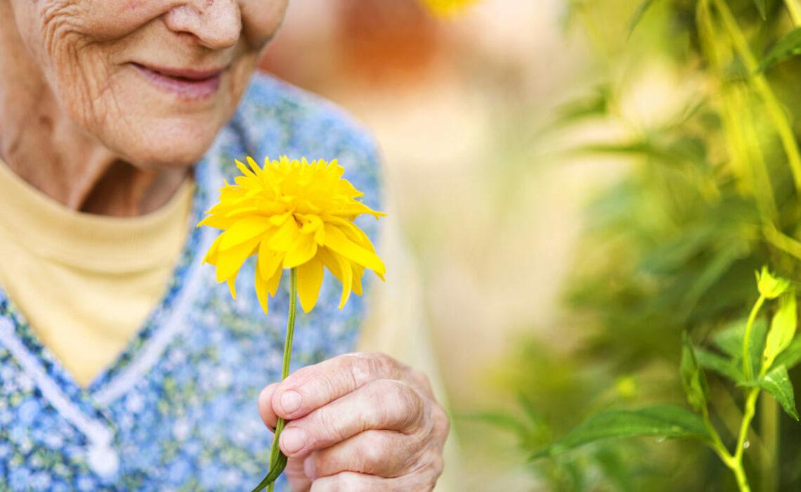 Cuidados com idosos na primavera?